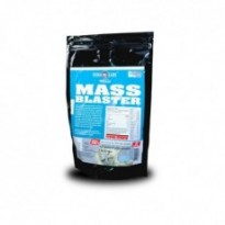 Гейнер Form Labs Mass Blaster 1000g,  вкус ваниль