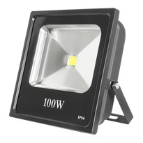 Прожектор Works LED FL100W SMD
