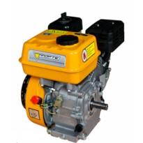 Двигатель бензиновый Forte F 192